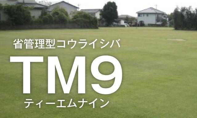 省管理型コウライシバ「TM9」